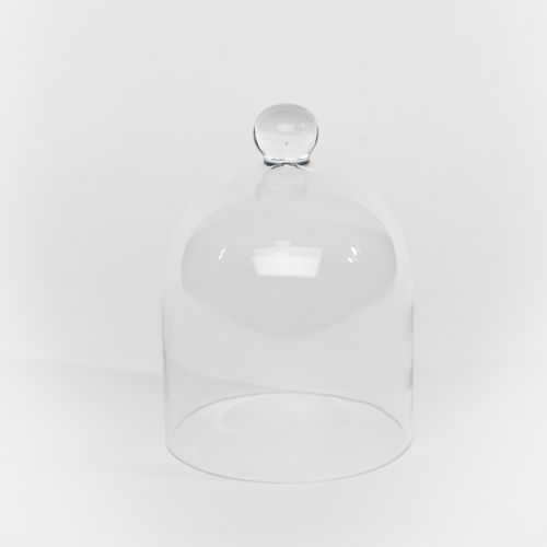 Clear Small Dome