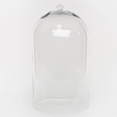 Clear Extra Large Glass Dome